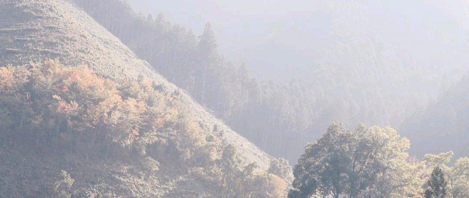 【結果発表】  11月のIGersJPインスタミート @大岳山
