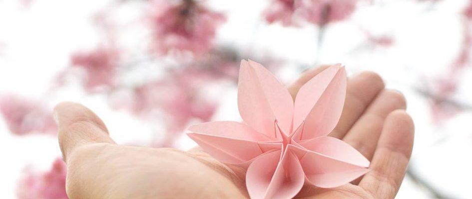 【参加者大募集】 3月のIGersJPインスタミート WWIM15 @新宿御苑 !